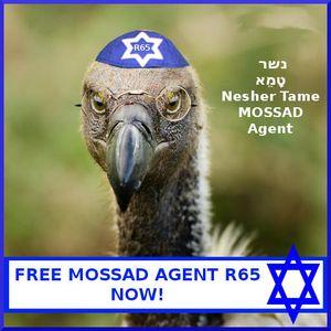 Free Mossad Agent R65 Now!