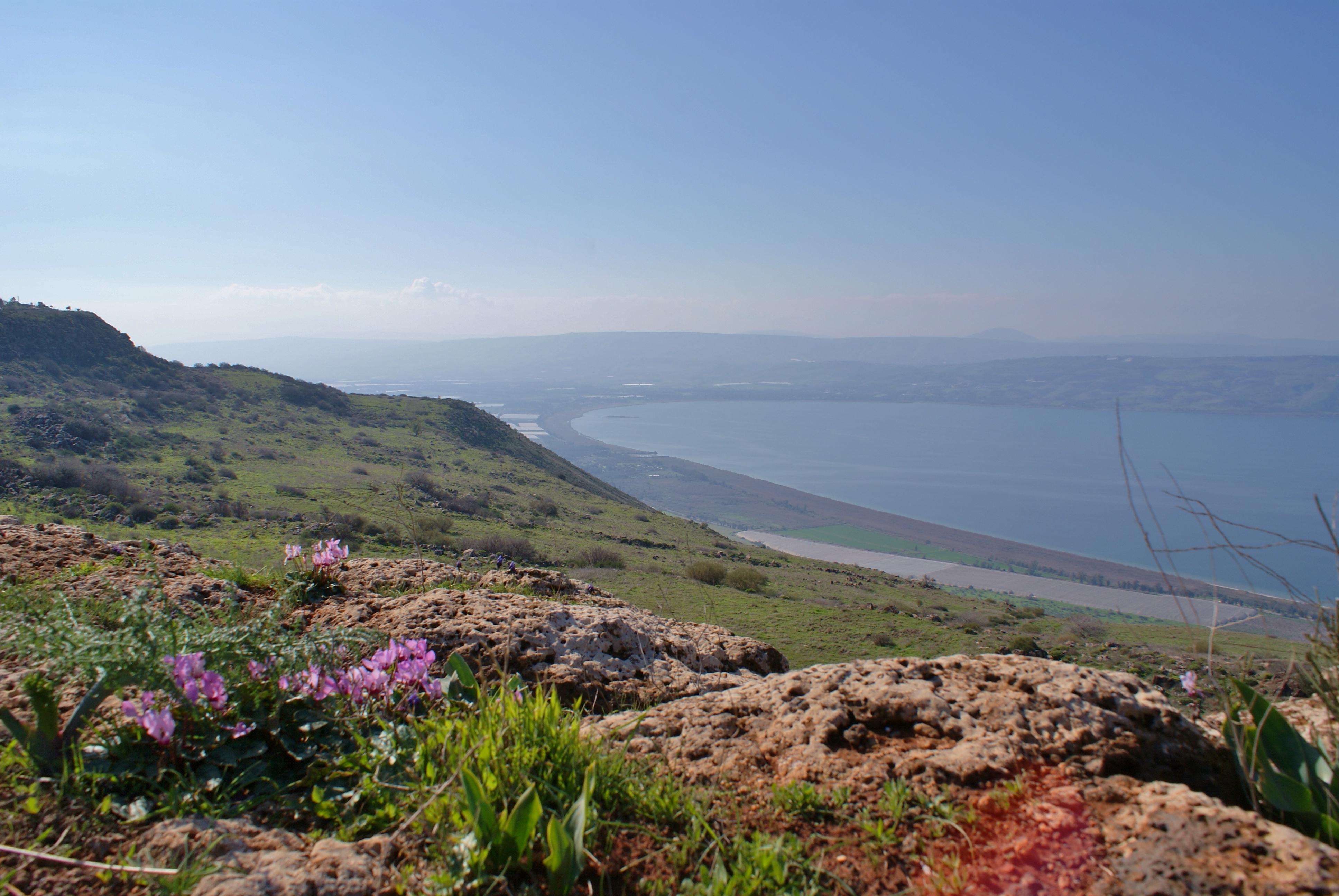 Kinneret Israel  city photo : The Kinneret Sea of Galilee has risen considerably since the ...