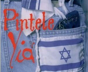 Pintele Yid: A Rabbi meditates on the meaning of 'chosenness' and Jewish particularism