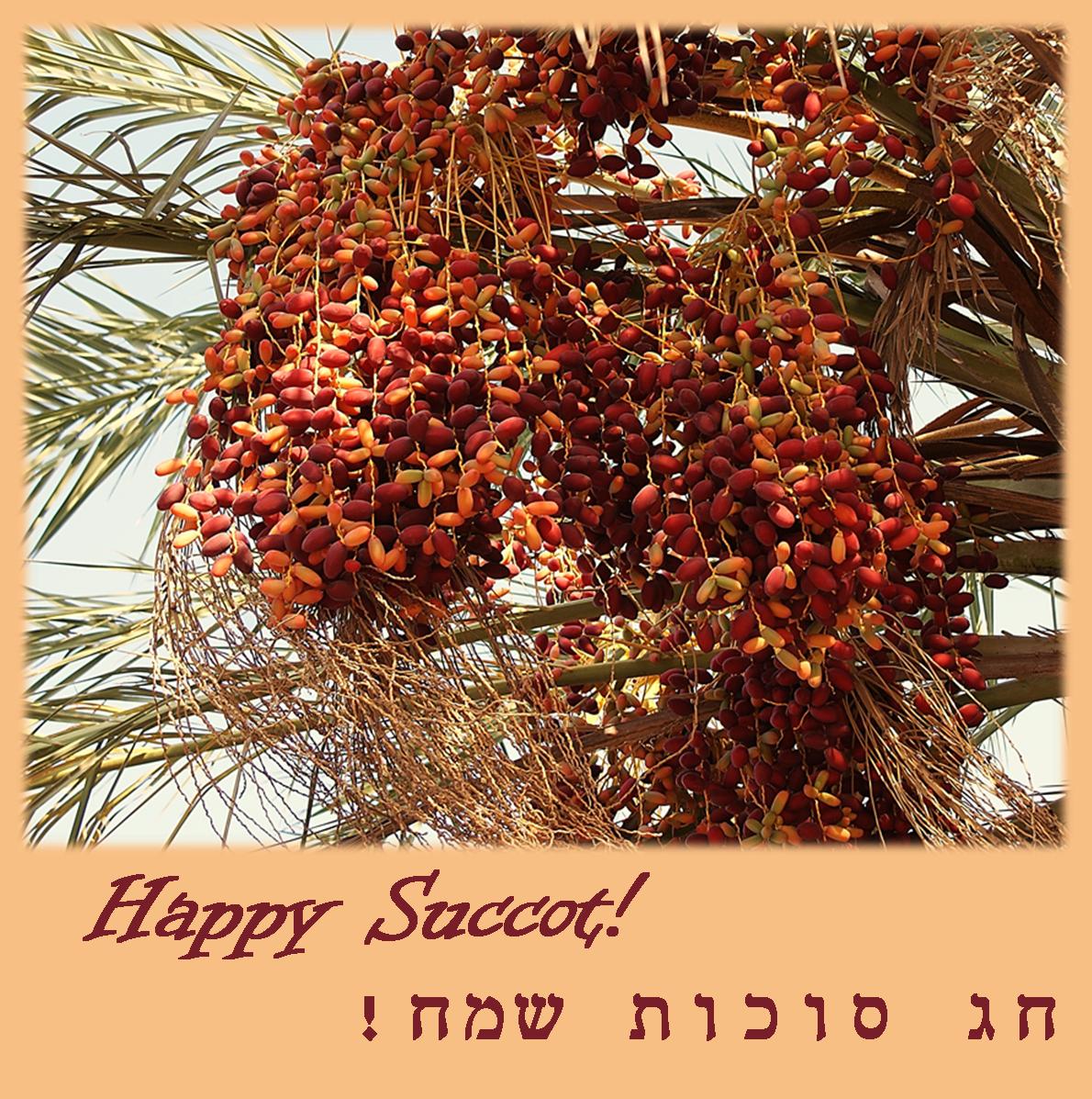 Happy Succot!