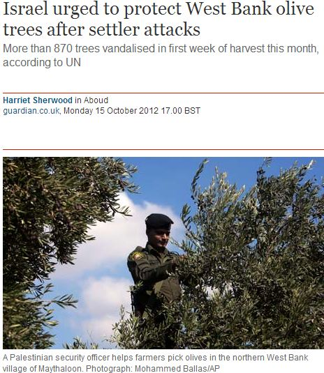 Uprooting the Truth: Olive Trees as the latest 'obstacle to peace'