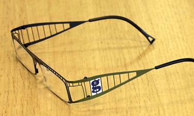 Guardian Goggles